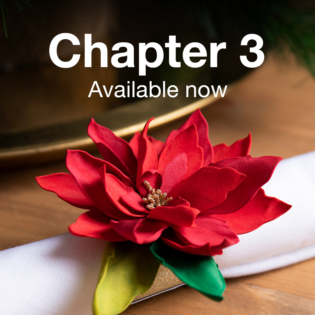 Chapter 3 Launch