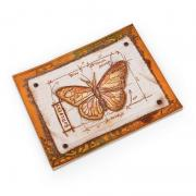 Butterfly Card #4