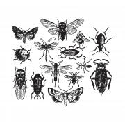 Stampers Anonymous Cling Mount Stamps - Entomology
