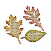Sizzix Bigz Die - Tattered Leaves by Tim Holtz