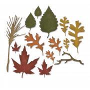 Sizzix Thinlits Die Set 14PK - Fall Foliage