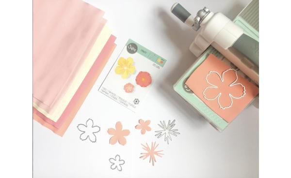 Craft Essentials for Beginners!