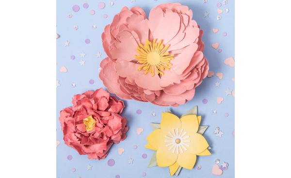 How to Create Perfect Peonies.